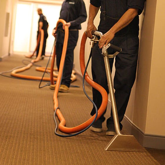 hotel carpet cleaning services